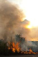 Queimada perde o controle e avança em pastos a beira da Pa 150Jacundá , Pará, Brasil12/08/2009Foto Paulo Santos