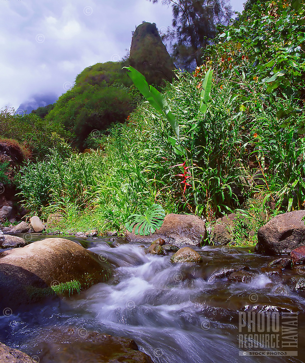 "'Iao Stream in 'Iao Valley, West Maui. Considered one of Hawai'i's most historical and sacred places, 'Iao Valley is the site of the 1790 Battle of Kepaniwai (or ""the damming of the waters"" by fallen warriors). Behind the stream is 'Iao Needle, rising 1,200 feet above the valley floor and approximately 2,250 feet above sea level."
