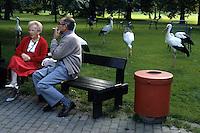 Anziani. Elderly....