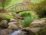 Spring in Sarah P. Duke Gardens.<br /> Iris Bridge<br /> Photo by Bill Snead/Duke Photography #dukephotoaday, #dukefacilities