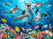 Howard, SELFIES, paintings+++++,GBHR875,#Selfies#, EVERYDAY ,horses ,underwater,maritime,dolphins