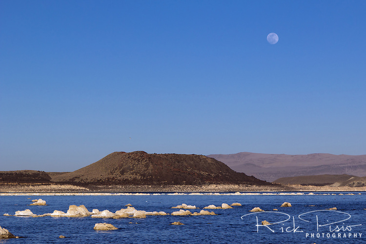 A full moon rises above Negit Island and Mono Lake.