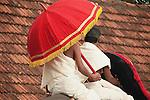 elephant, from yearly, event, near ,kerala, india ,