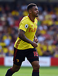 Andre Gray of Watford during the premier league match at the Vicarage Road Stadium, Watford. Picture date 26th August 2017. Picture credit should read: Robin Parker/Sportimage