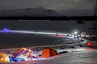 Dogs rest on straw as mushers and vets tend to them with headlamps on after arriving in the early morning hours at the Finger Lake checkpoint on March 05, 2018 during the 2018 Iditarod. <br /> <br /> Photo by Jeff Schultz/SchultzPhoto.com  (C) 2018  ALL RIGHTS RESERVED