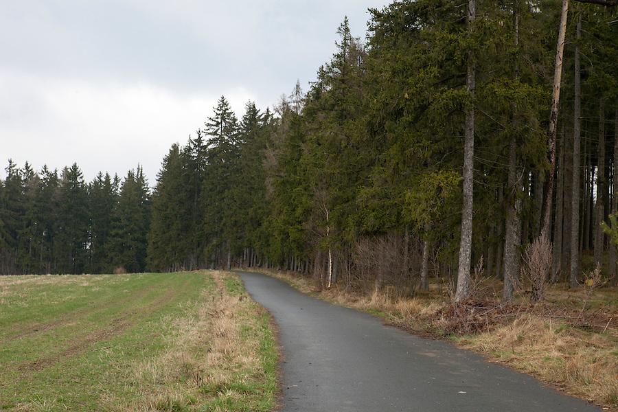 HIking path by the woods, southern Bohemia, Czech Republic, Europe