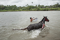 Johannes Ndara Kepala, a senior Pasola warrior, bathes his sandalwood horse at the nearby river of his village of Wainyapu.