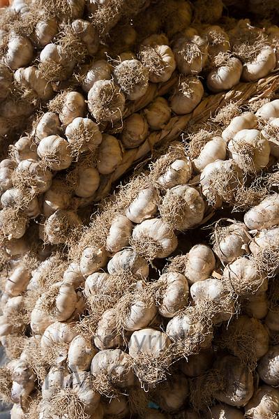 Garlic plaits, Allium sativum, on sale in food market in Pienza, Tuscany, Italy