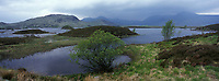 Europe/Grande-Bretagne/Ecosse/Highland/Env de Glencoe : Lande et Loch