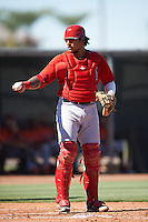 Los Angeles Angels of Anaheim Jose Briceno (9) during an Instructional League game against the San Francisco Giants on October 13, 2016 at the Tempe Diablo Stadium Complex in Tempe, Arizona.  (Mike Janes/Four Seam Images)