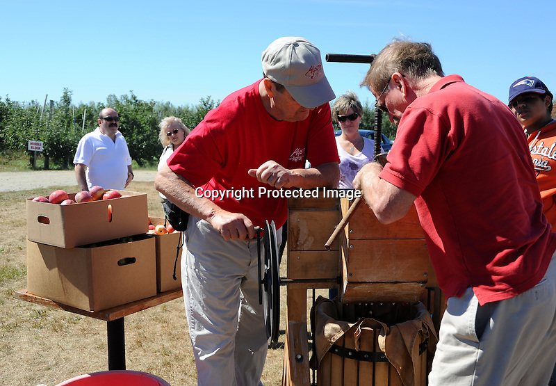 Making Apple Cider at the Orchard, New Hampshire
