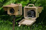 Camera traps, Williamstown, Massachusetts