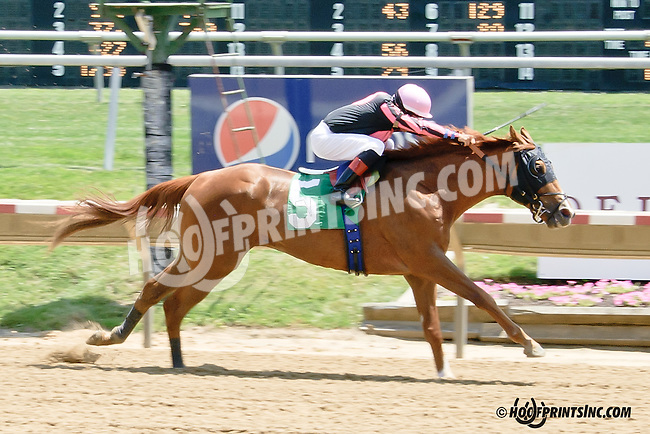 Kingofgoldstreet winning at Delaware Park racetrack on 6/28/14<br /> Happy 102nd Birthday to Joe Postorino