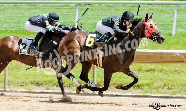 Becks Expectations winning at Delaware Park on 6/29/13