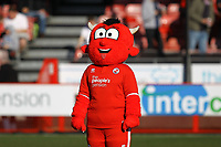 The Crawley mascot during Crawley Town vs Macclesfield Town, Sky Bet EFL League 2 Football at Broadfield Stadium on 23rd February 2019