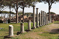 Forum delle Corporazioni (Forum of the Corporations) behind the theatre, 1st century BC, Ostia Antica, Italy. Picture by Manuel Cohen