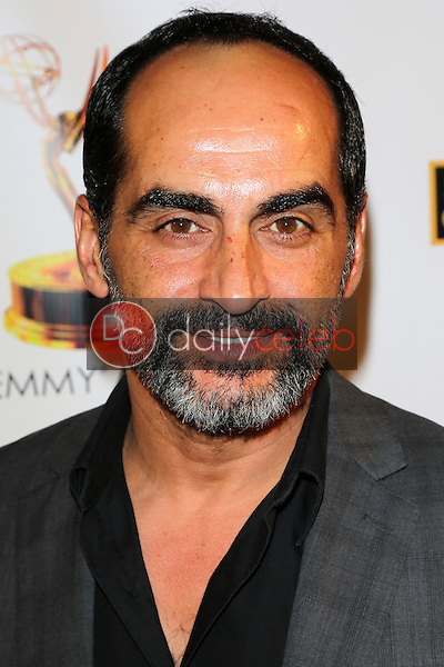 Navid Negahban<br />