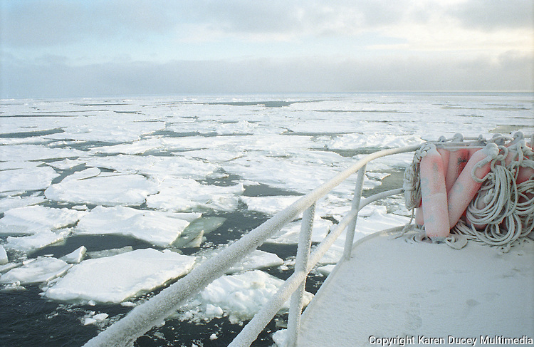 Buoys are frozen on the deck of a crab fishing boat as it drives through pancake ice in the Bering Sea, Alaska.