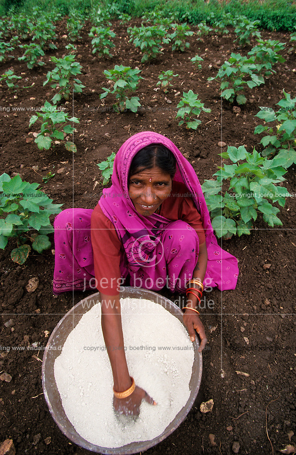 Indien Landarbeiterin verstreut per Hand chemische Duenger in Baumwollfeld / INDIA female farm labourer applies synthetic fertilizer in BT cotton field