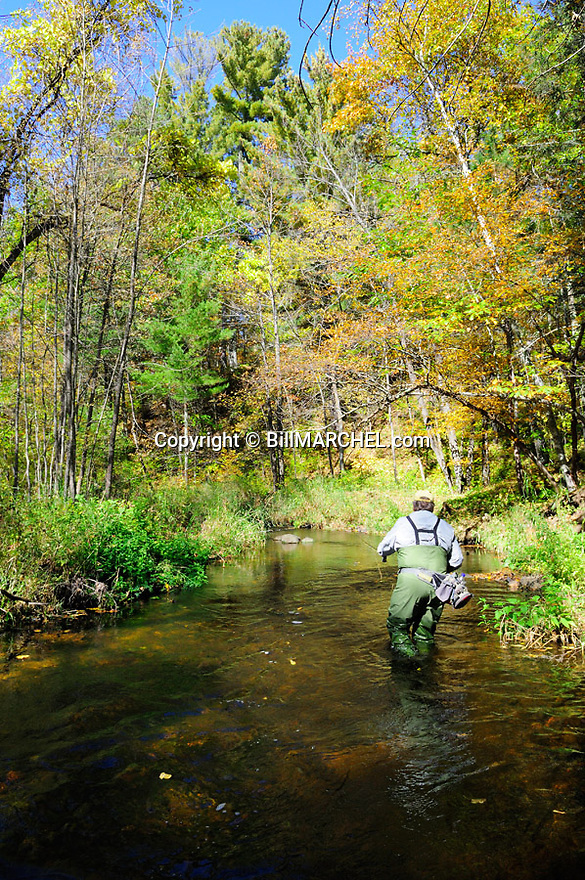 00416-030.14 Fishing:  Angler is fly fishing on stream.  Fall color, brook trout, brown trout, flies, wade.