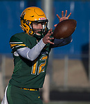 Bishop Manogue quarterback Andrew Scolari takes the snap against Arbor View Aggies NIAA 4A State Semi-Final football game played at McQueen High School on Saturday, Nov. 24,2018.