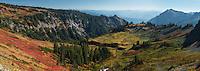 Subalpine meadow & North Cascade Mountains from Mt. Rainier, Washington