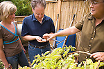 """Andrew and Patricia Nimelman cosult with Donna Smith (otherwise known as """"Your Backyard Farmer) at their home in NE Portland, OR where they discuss the potatoes - which ones to harvest and which ones to store for next year's crop."""