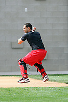 Neftali Soto. Cincinnati Reds spring training workouts at the Reds new complex, Goodyear, AZ - 02/19/2010. Soto, an infielder in the Reds minor league system, is working out at the complex in preparation for a possible switch to catcher..Photo by:  Bill Mitchell/Four Seam Images.