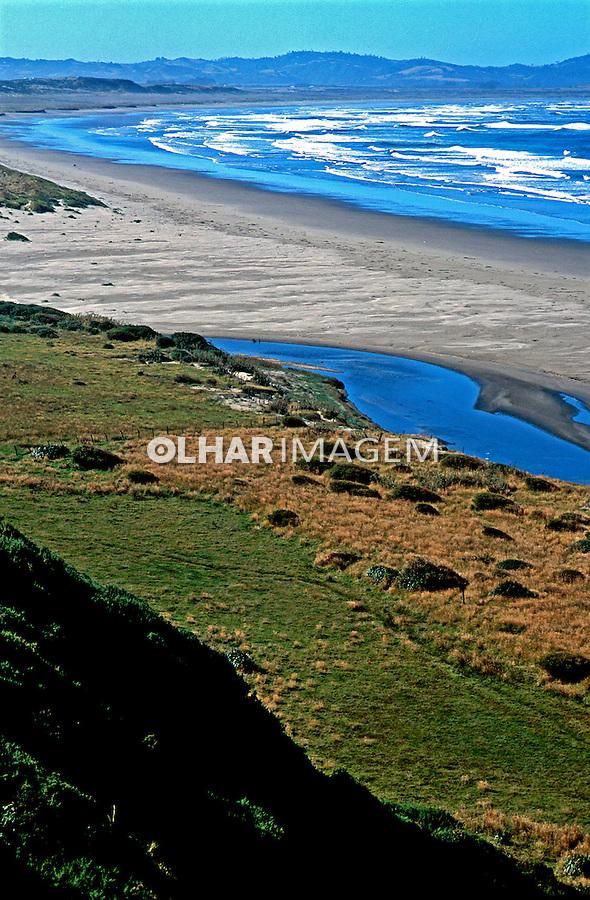Região dos sete lagos. Chile. Foto de Vinicius Romanini. Data.2000