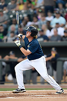 First baseman Dash Winningham (34) of the Columbia Fireflies bats in a game against  the Charleston RiverDogs on Friday, June 9, 2017, at Spirit Communications Park in Columbia, South Carolina. Columbia won, 3-1. (Tom Priddy/Four Seam Images)