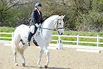 12/04/2015 - Class 7 - Medium 61 - British Dressage - Brook Farm Training Centre