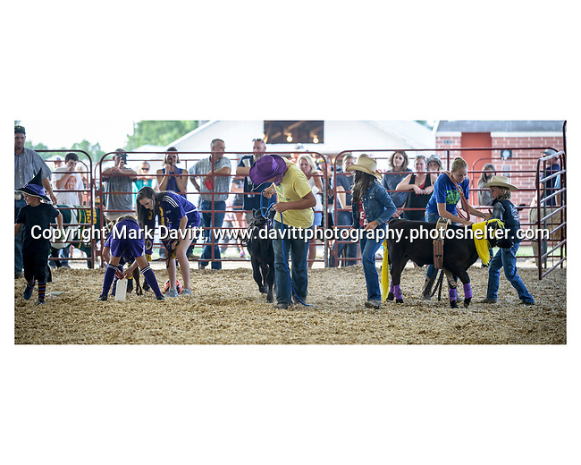 The FFA hosted the Bucket Calf Costume Contest during the Warren County Fair.