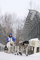 Saturday March 6 , 2010   Cindy Gallea and team run across the bridge over Northern Lights Blvd during the ceremonial start of the 2010 Iditarod in Anchorage , Alaska