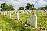 65095-02609 Gravestones at Jefferson Barracks National Cemetery St. Louis, MO