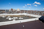 Rooftop garden of Ford Foundation-funded low-income housing in the Bronx, New York, NY