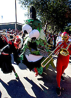 Members of the Leland Stanford marching band and the Stanford Tree perform before Saturday, November 23, 2013, Big Game at Stanford University.