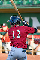 Ryan Dale (12) of the Idaho Falls Chukars at bat against the Ogden Raptors in Pioneer League action at Lindquist Field on June 28, 2016 in Ogden, Utah. The Raptors defeated the Chukars 12-11. (Stephen Smith/Four Seam Images)