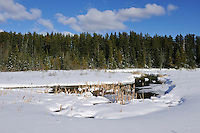 Wetland in winter<br /> Timmins<br /> Ontario<br /> Canada
