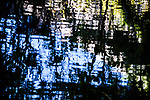 9.26.17 - Pond Reflected...