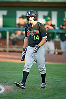 Logan Taylor (14) of the Great Falls Voyagers walks up to bat against the Ogden Raptors at Lindquist Field on August 16, 2017 in Ogden, Utah. The Voyagers defeated the Raptors 11-6. (Stephen Smith/Four Seam Images)