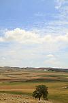 Israel, Shephelah, a view south from Hurvat Rimon