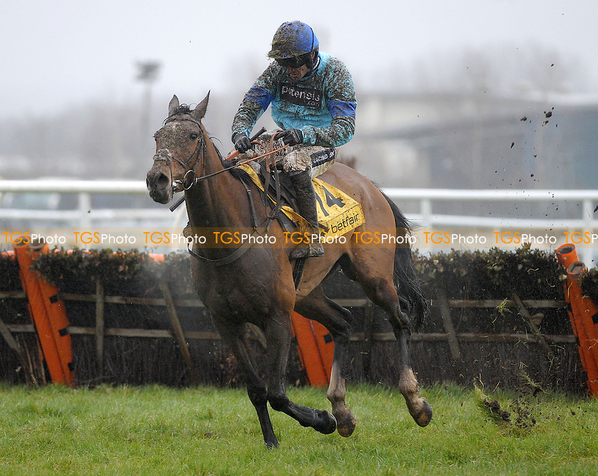 Bangitoto ridden by Ruby Walsh during the Betfair. Don´t Settle For Less Handicap Hurdle Cl2 - Horse Racing at Newbury Racecourse, Newbury, Berkshire - 09/02/2013 - MANDATORY CREDIT: Martin Dalton/TGSPHOTO - Self billing applies where appropriate - 0845 094 6026 - contact@tgsphoto.co.uk - NO UNPAID USE.