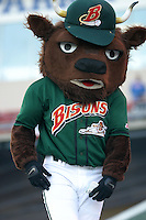 April 8, 2005:  Buster T. Bison of the Buffalo Bisons during a game at Dunn Tire Park in Buffalo, NY.  Buffalo is the International League Triple-A affiliate of the Cleveland Indians.  Photo by:  Mike Janes/Four Seam Images