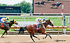 Graced winning at Delaware Park on 8/17/13