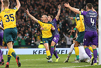 2nd November 2019; Hampden Park, Glasgow, Scotland; Scottish League Cup Football, Hibernian versus Celtic; Scott Brown of Celtic celebrates after making it 4-1 to Celtic in the 56th minute - Editorial Use