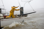 Paul  Pflueger  throws another rope in the driving rain to secure his boat tied up under the Apalachicola bridge as Tropical Storm Claudette pounds the Florida panhandle coast in Apalachicola, Florida August 16, 2009.