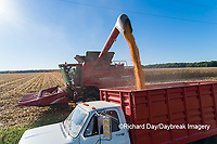 63801-12618 Unloading corn into truck during harvest-aerial  Marion Co. IL