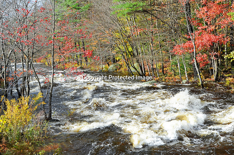 Whitewater on the Ashuelot River after Heavy October Rains in Southern New Hampshire USA