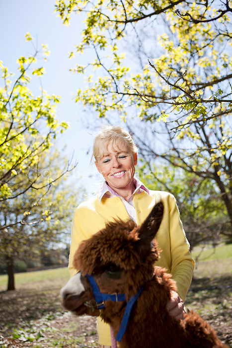 Liisa Joronen, founder of Finnish corporation SOL, poses for the photographer with one of her pet alpacas at her home in the Var, France, 11 April 2012