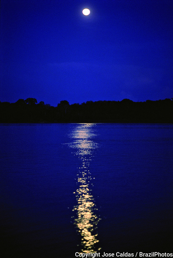 Amazon rain forest at night, moonlight in river, Brazil.